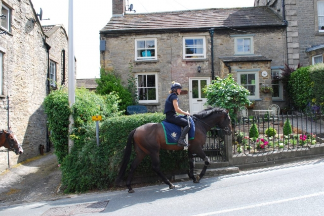 Cartmel Cottage Racehorses